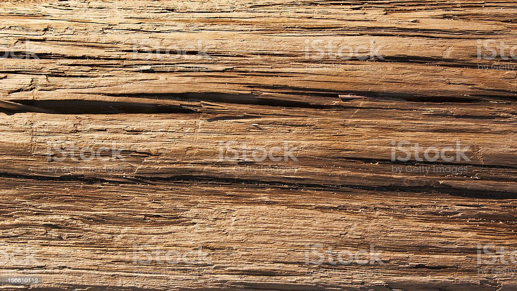 Driftwood Background royalty-free stock photo