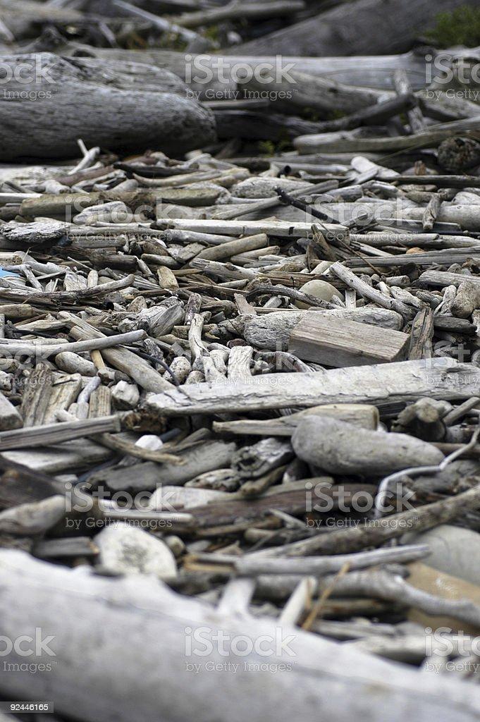 Driftwood Creek stock photo