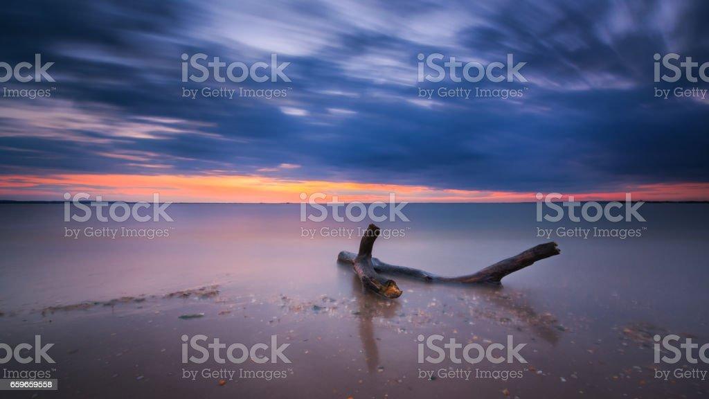 Driftwood long exposure seascape stock photo