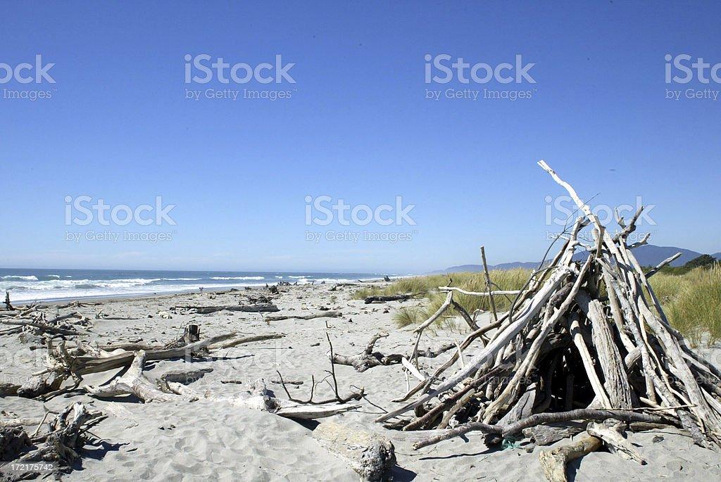 Driftwood on Beach 1 royalty-free stock photo