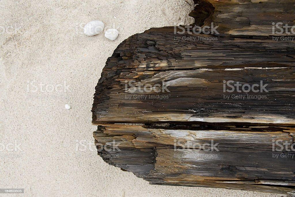 Driftwood on beach royalty-free stock photo
