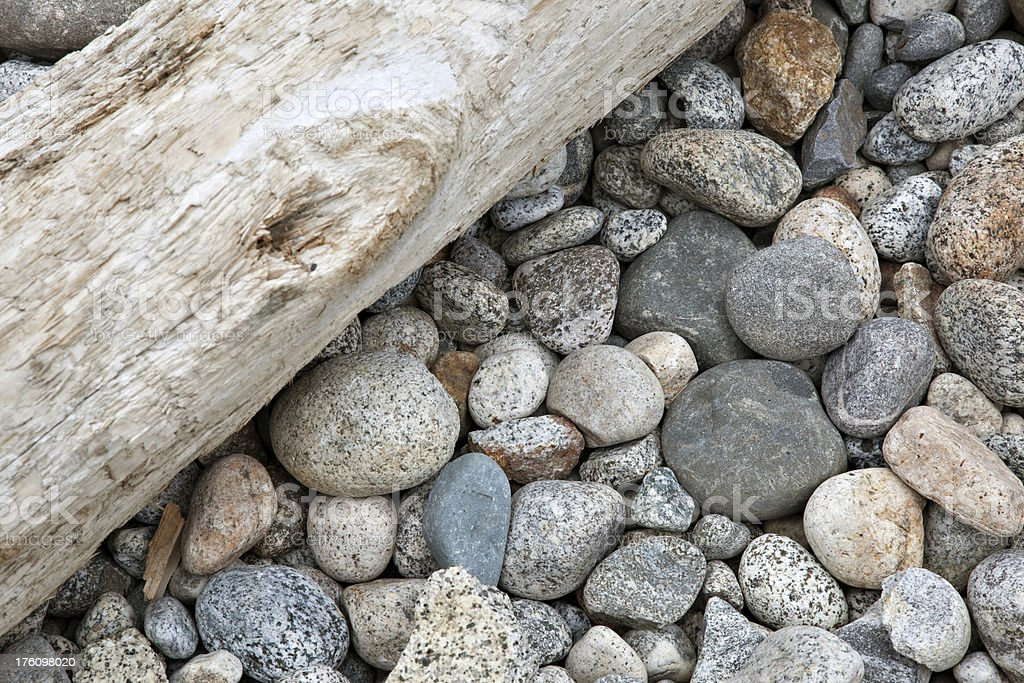 Driftwood on River Bed royalty-free stock photo