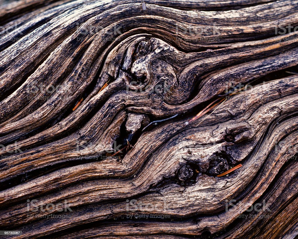 Driftwood Pattern royalty-free stock photo