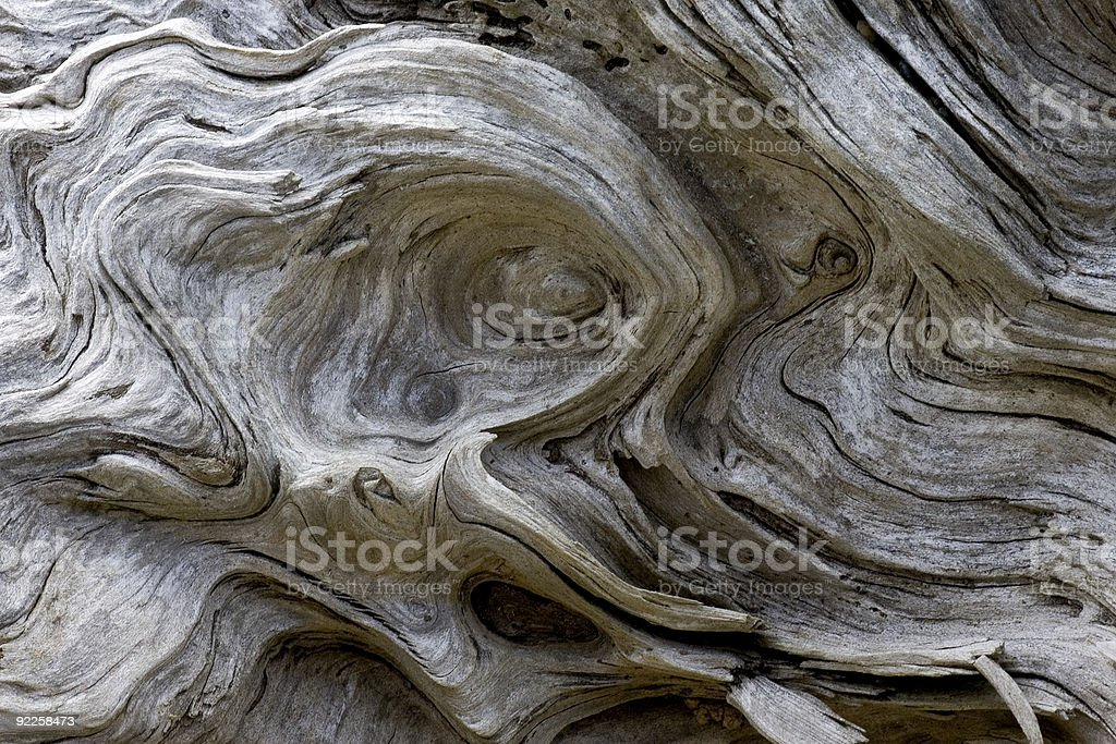 Driftwood patterns stock photo