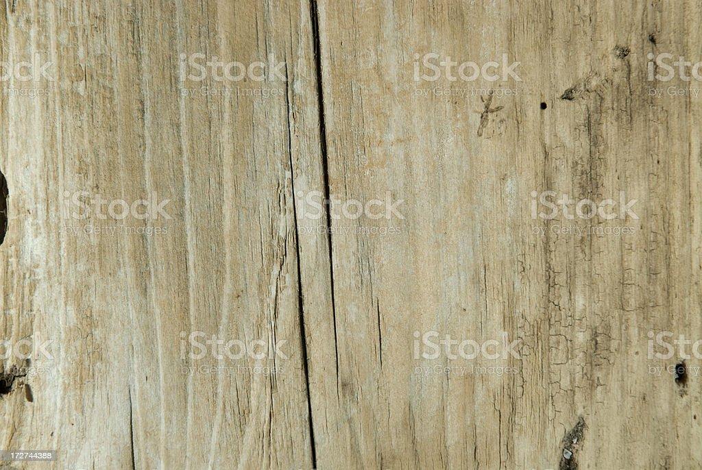 Driftwood Plank royalty-free stock photo