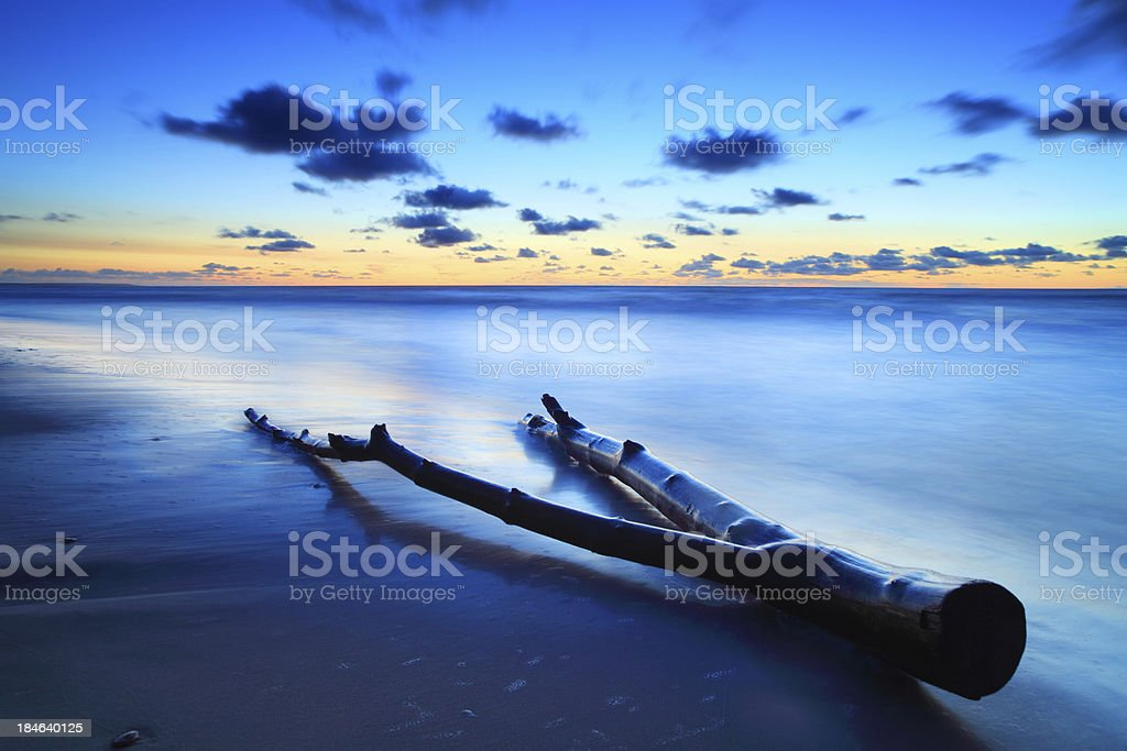 Driftwood shaped like Pinocchio legs on the Beach after Sunset royalty-free stock photo