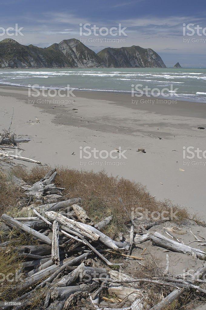 Driftwood, Tolaga Bay, New Zealand stock photo