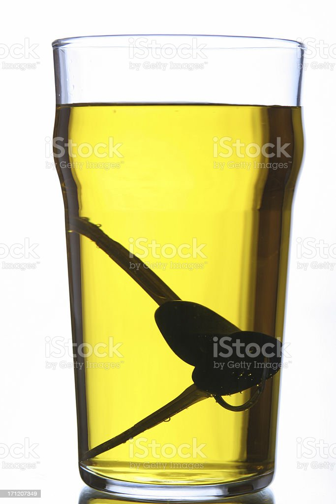 drink or drive? royalty-free stock photo