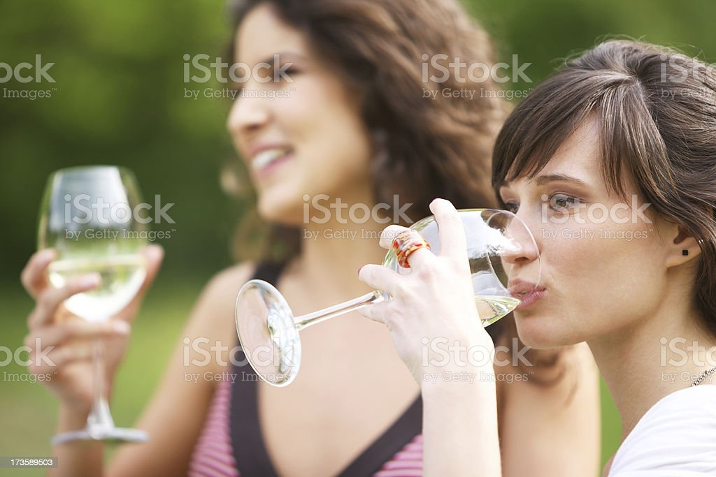 Drinking champagne royalty-free stock photo