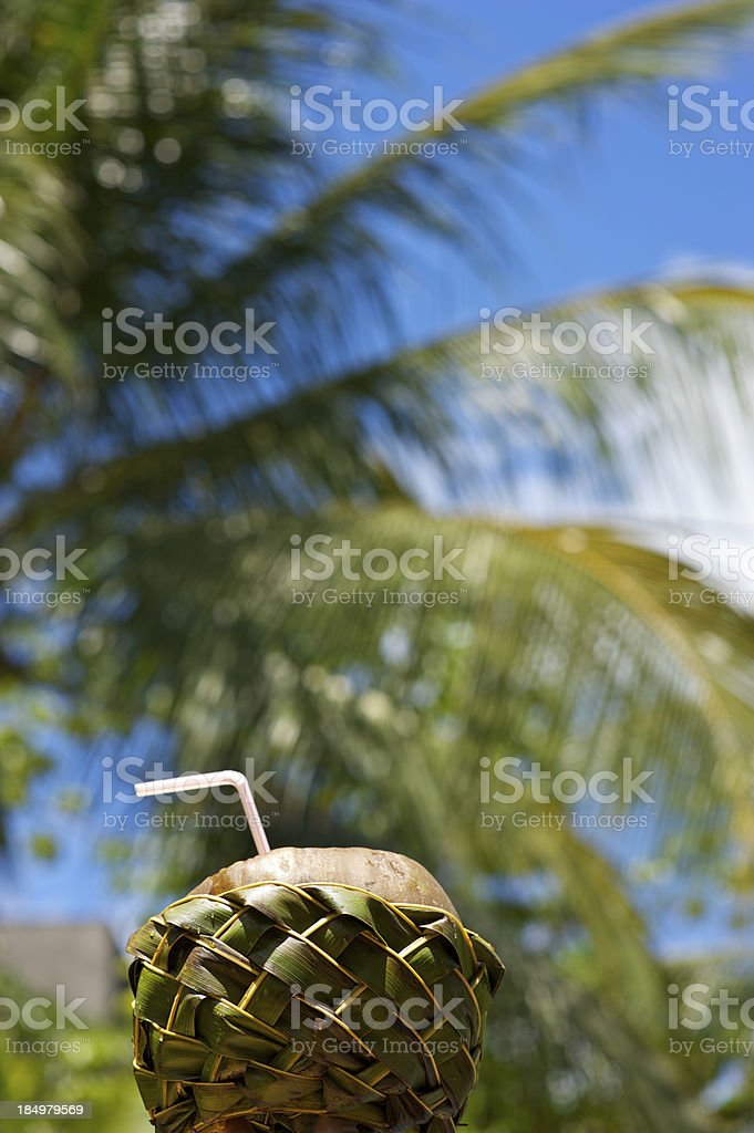 Drinking Coconut in Woven Frond Basket Palm Background stock photo