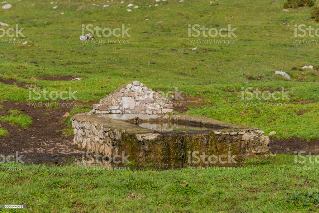 Drinking trough for cattle. stock photo