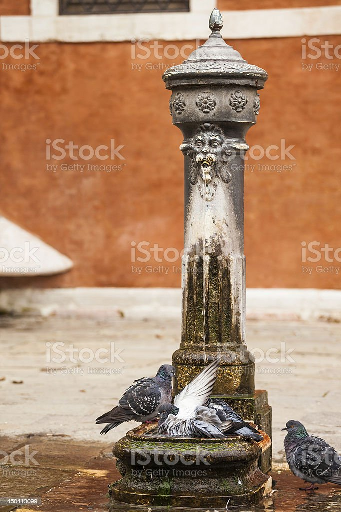 Drinking water fountain in venice royalty-free stock photo