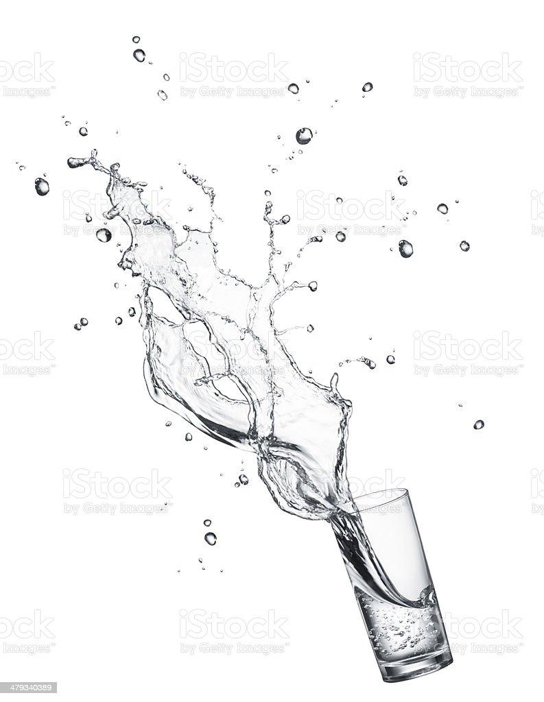 drinking water splashing royalty-free stock photo