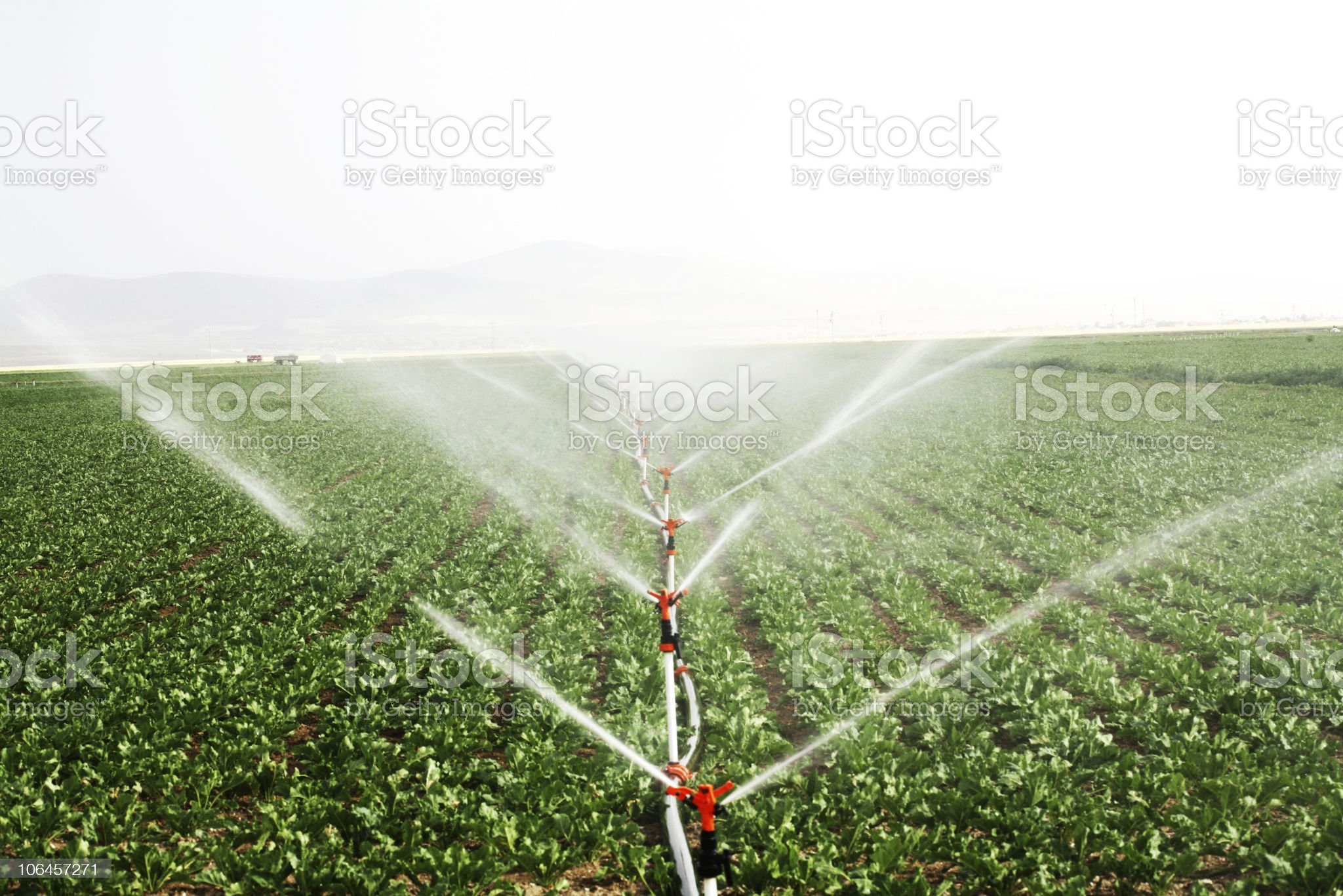 drip irrigation systems royalty-free stock photo
