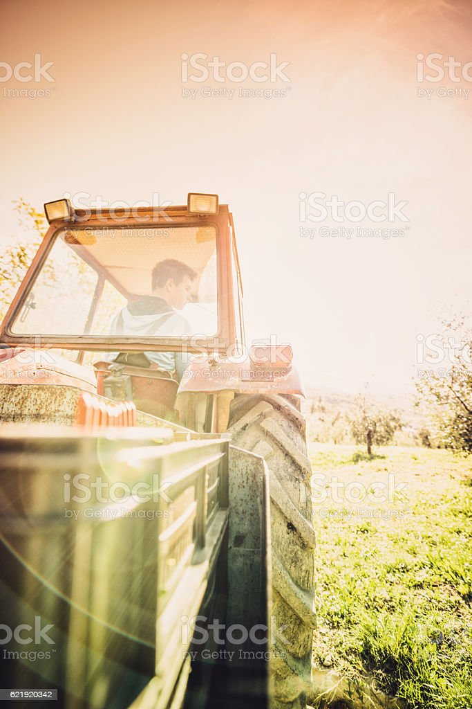 drive the tractor stock photo