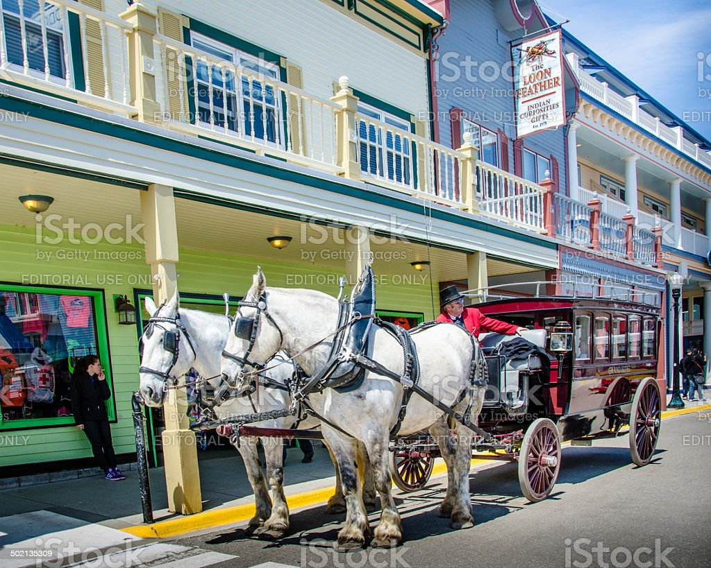 Driver of a vintage horse drawn carriage waits for passengers stock photo