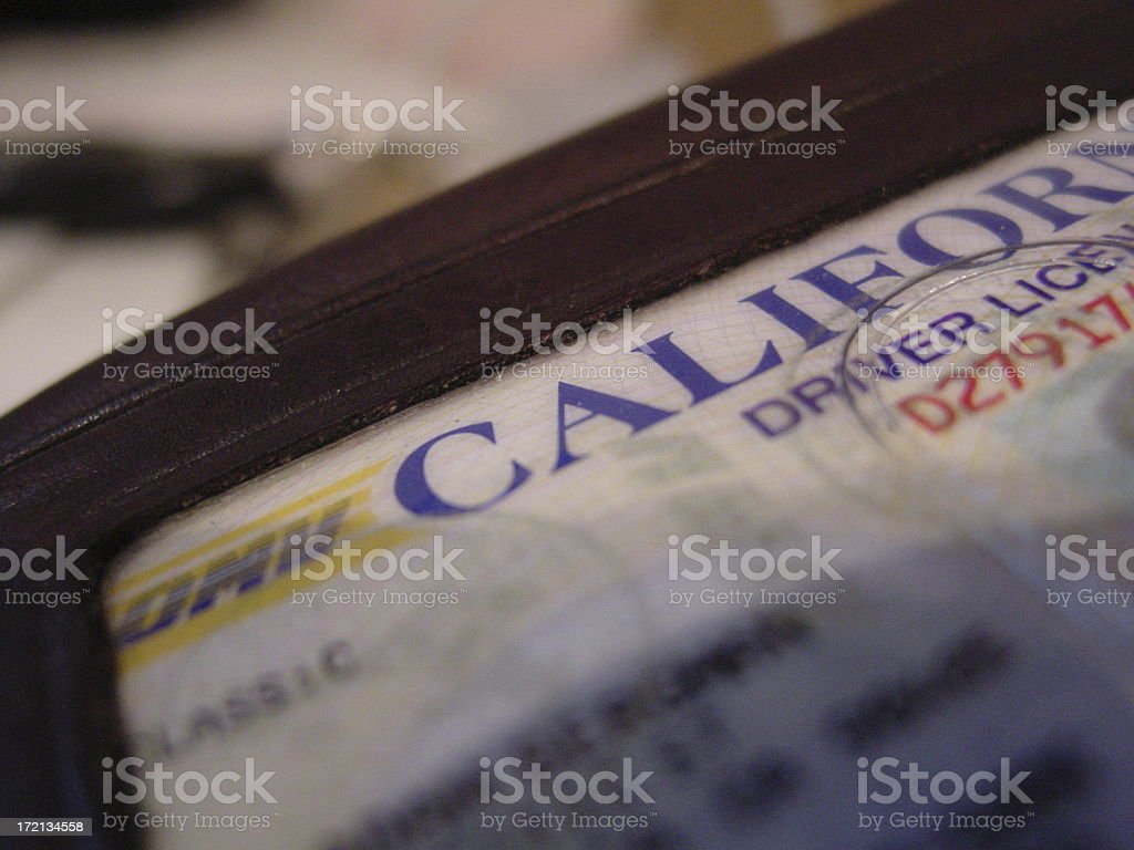 Driver's Licence stock photo