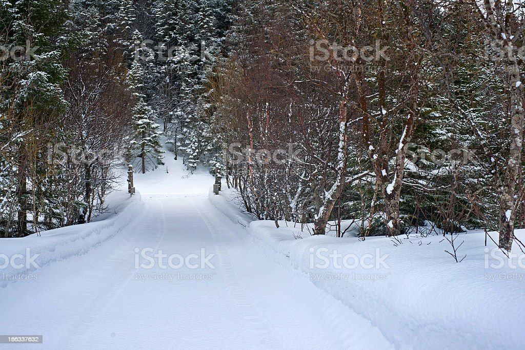 Driveway covered in snow royalty-free stock photo