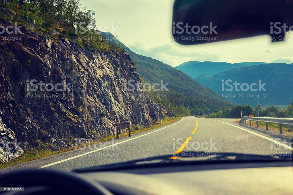 Driving a car on mountain road stock photo