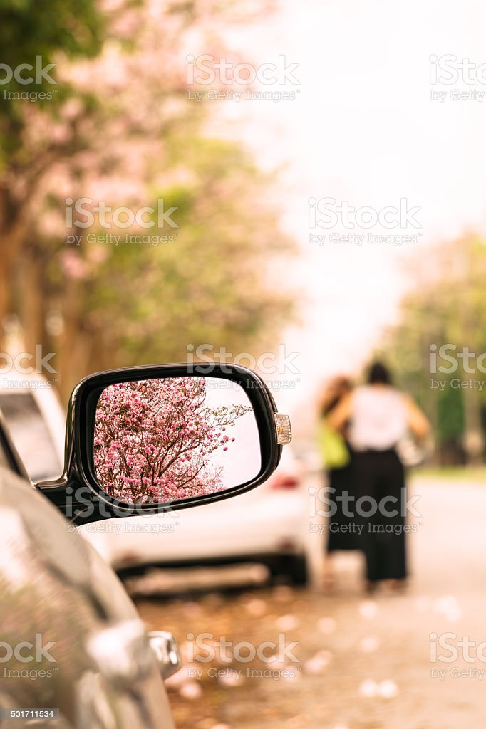 Driving a car travel in flower road stock photo