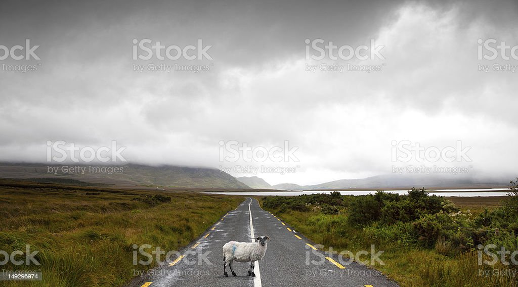 Driving in Ireland royalty-free stock photo