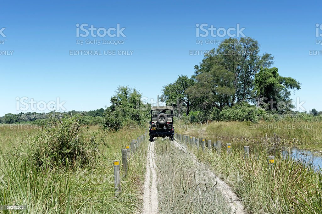 Driving in the wetlands royalty-free stock photo