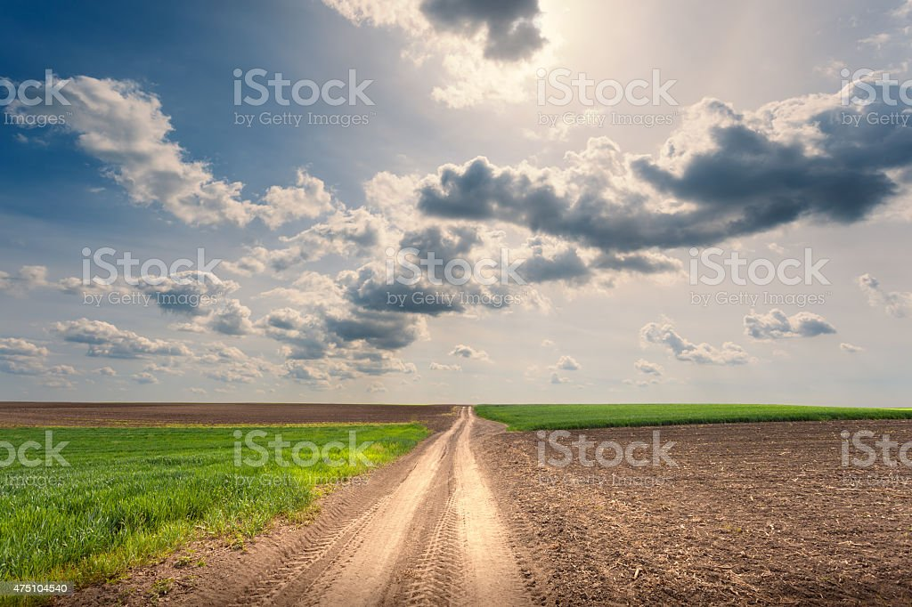 Driving on an empty dirt road at sunny day stock photo