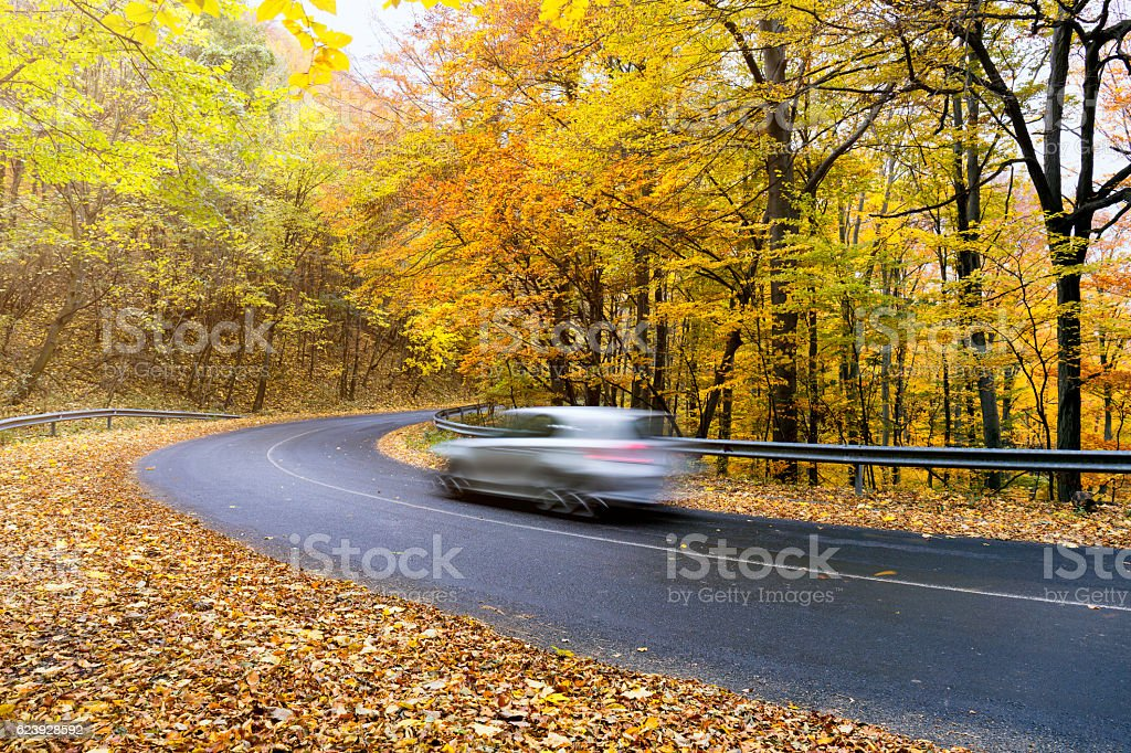 Driving through a deciduous forest in the Pilis Mountains stock photo