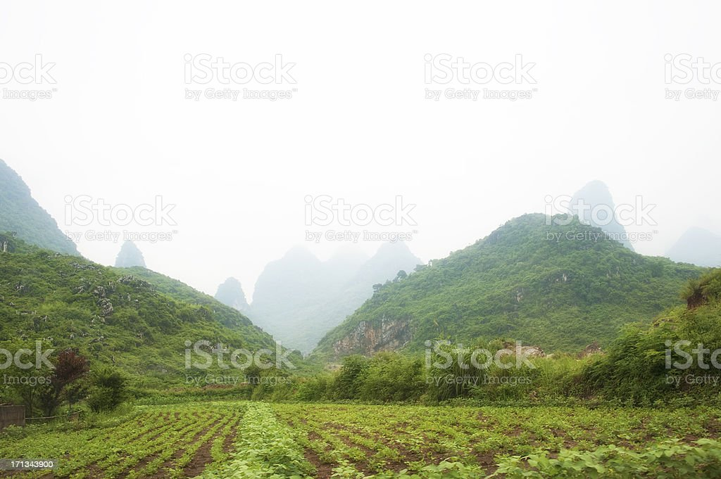 Drizzly field in Yunnan stock photo