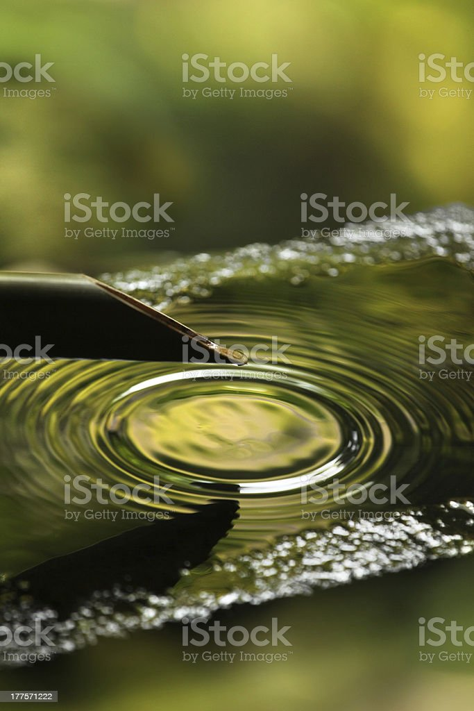 Drop forming water ripples in a Japanese zen garden royalty-free stock photo