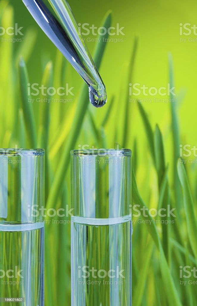 drop of clean water in test tube royalty-free stock photo