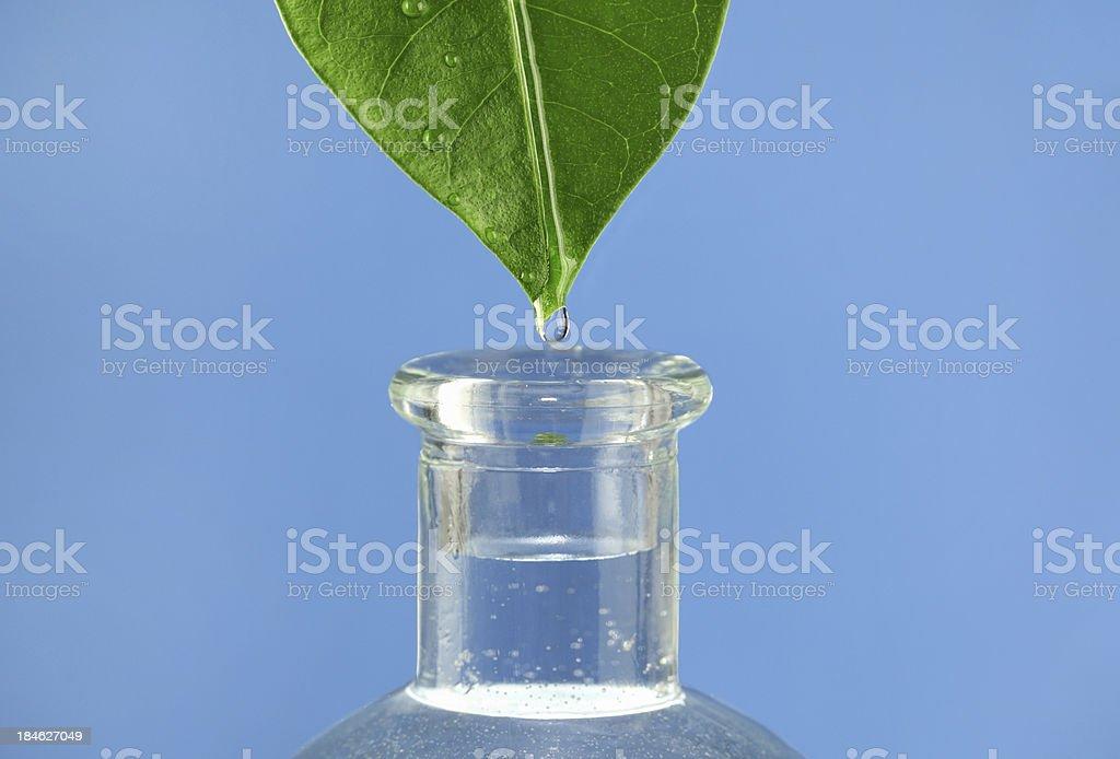 Drop of Freshness stock photo