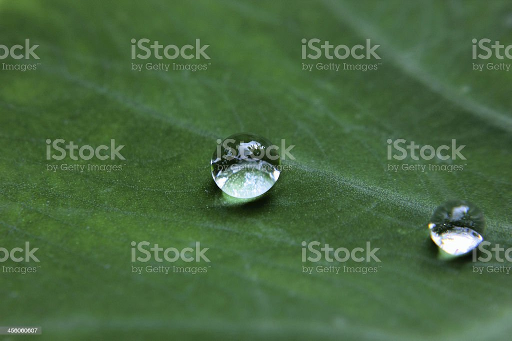 drop stock photo