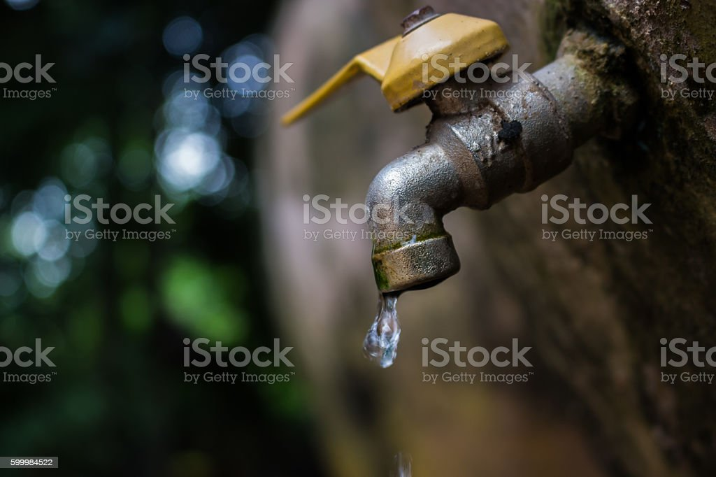 Drop, Water is life. stock photo