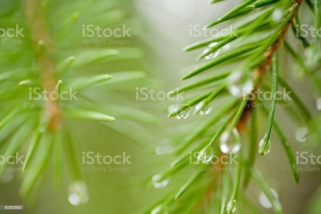 droplets stock photo
