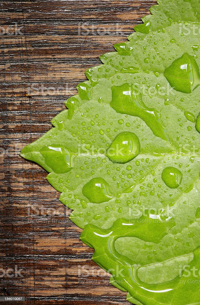Droplets Series royalty-free stock photo