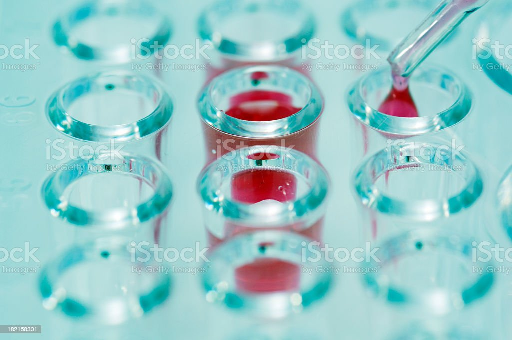 dropper dropping red liquid into testing dish stock photo