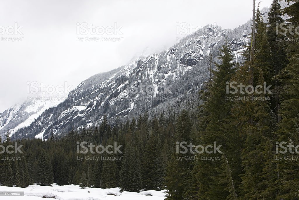 Dropping Snow Level royalty-free stock photo