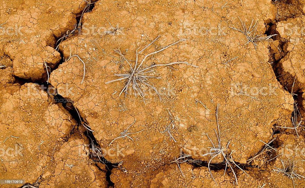 Dürre und vom Aussterben bedroht. Gebrochen Rot land Lizenzfreies stock-foto