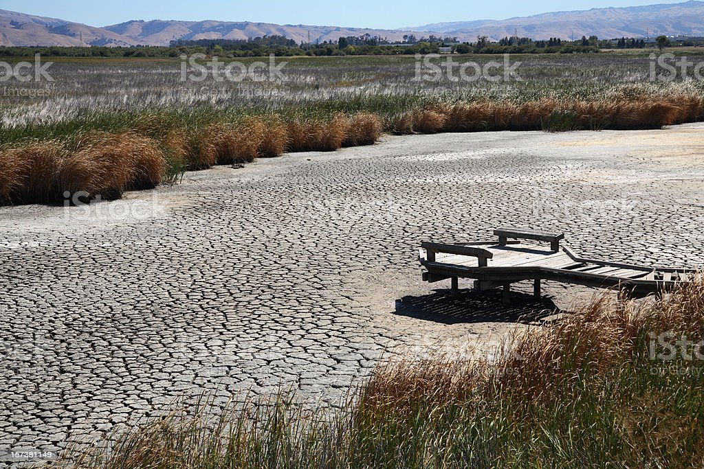 Drought conditions lead to dried up marsh or riverbed royalty-free stock photo