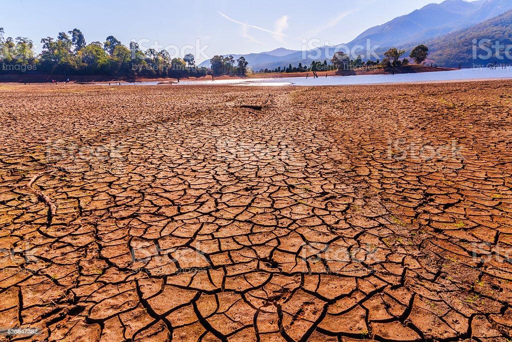drought cracked desert stock photo