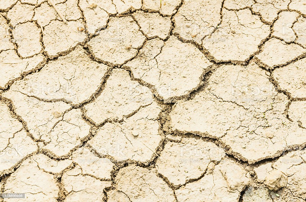 drought field, dry land royalty-free stock photo