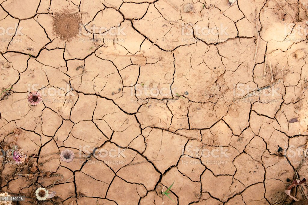 Drought in crushed dehydrated soils stock photo