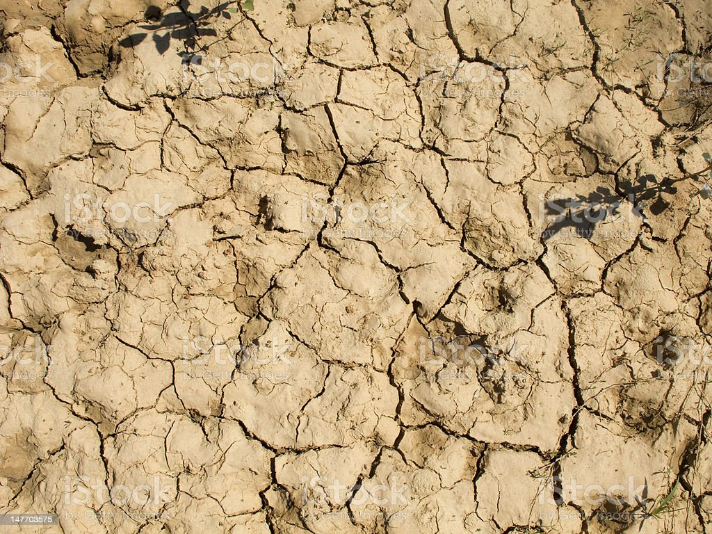 drought land in the fields of Catalonia royalty-free stock photo