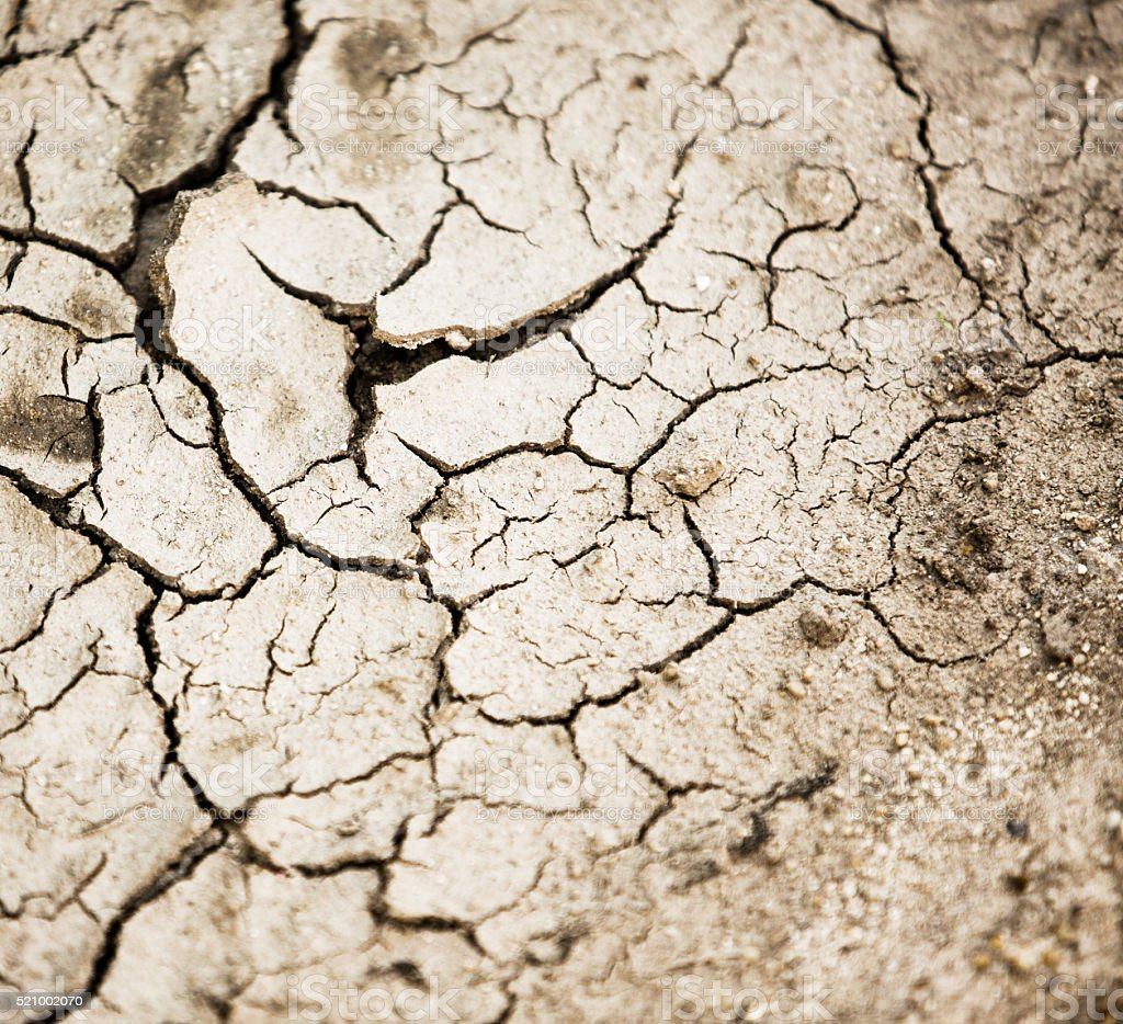 Drought. Natural background of cracked, dry, river mud. stock photo