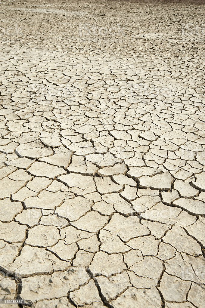 Drought royalty-free stock photo
