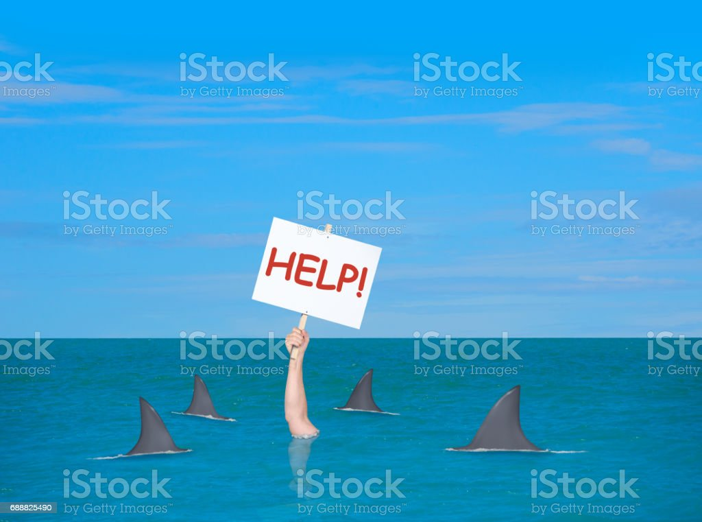 Drowning depressed man in with help sign surrounded by sharks stock photo