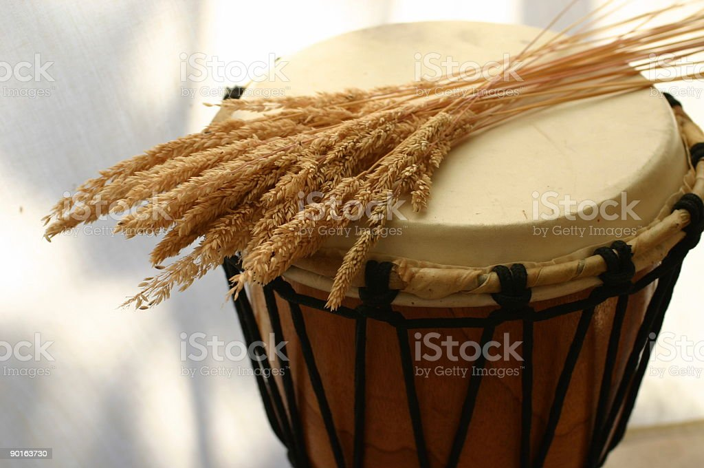 Drum with yellow grass royalty-free stock photo