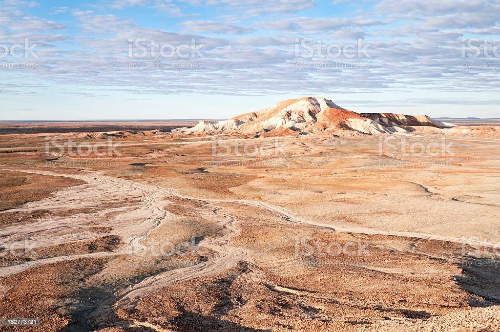 Dry Australian Desert royalty-free stock photo