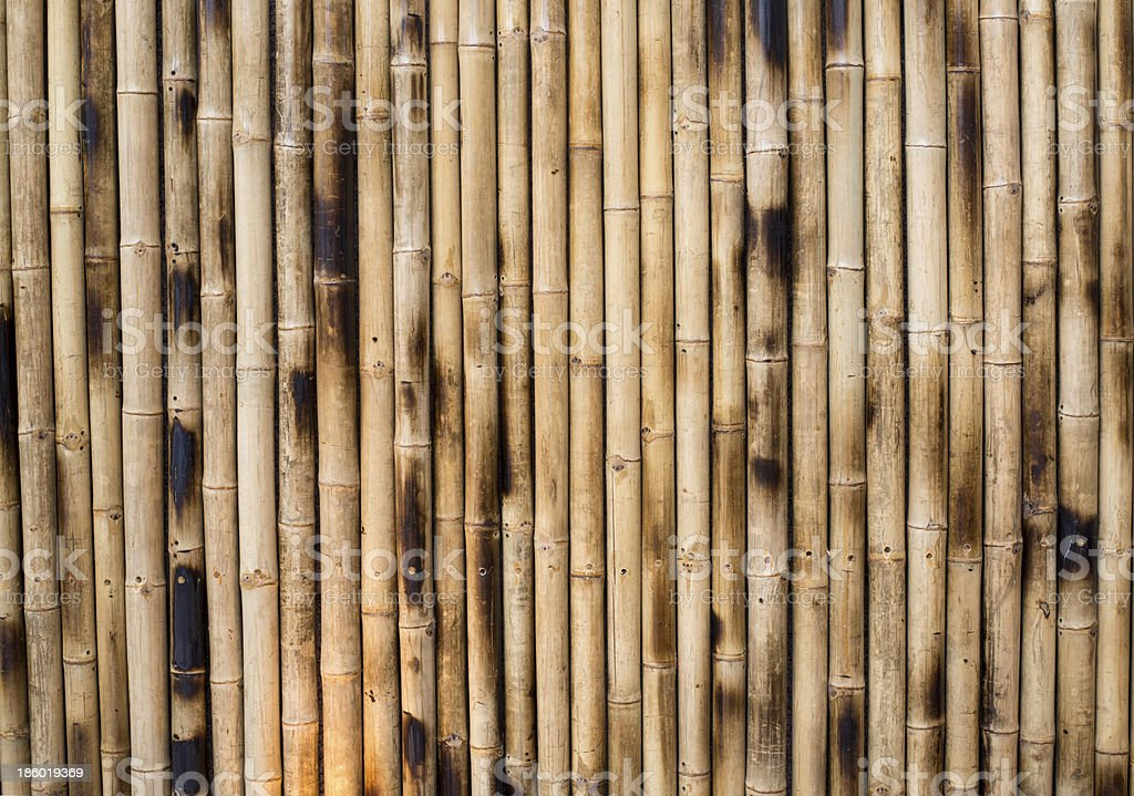 Dry Bamboo Columns stock photo